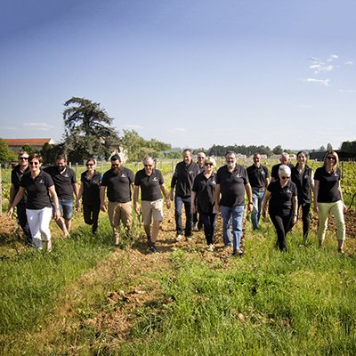Winegrowers in the vineyards